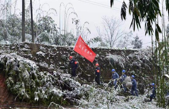 赤水供电局党员突击队及时进行线路清障