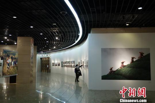 """""""这,就是贵州――改革开放四十年影像志""""展览现场。 钟欣 摄"""
