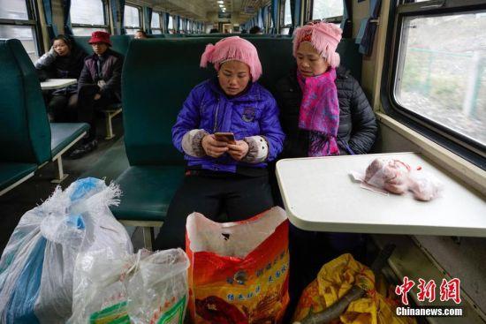 """1月17日,在开往贵阳的5639次列车上,少数民族妇女用手机预算农特产品售卖价格。往返于贵州省贵阳市与铜仁市玉屏县的5639/5640次普速列车,全程342公里,行驶7个多小时,是人们常提到的""""绿皮火车"""",从1975年全线通车至今,这列火车已开行44年。在过去22年间,从未提高票价,区间内最低票价2元。列车穿行于贵州山区,沿线16个站连通很多少数民族村寨,目前仍是沿线民众赶集买卖,进城办事的重要交通工具。2019年春运期间,贵阳客运段5639/5640次、5629/5630次、5645/5646次列车不停运,方便沿线民众出行。中新社记者 贺俊怡 摄"""