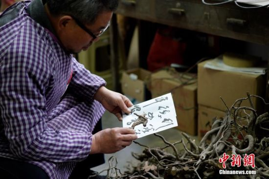 """1月19日,贵州清镇,李坤望在工作室内一堆废弃树根前挑选用材。今年68岁的李坤望,人称""""根痴"""",于1992年初下岗后,开始有意识搜集被废弃的树根,根据树根的自然形态,用传统木匠工艺""""榫卯结构"""",构建成原书法、绘画作品墨迹走势及神韵的艺术门类。2004年,李坤望将其独创的作品命名为""""墨迹根书、画""""。在他的工作室里,一幅宽500厘米、高250厘米、重220公斤的巨型""""墨迹根书""""《沁园春·雪》是他的代表作,这幅墨迹根书失真率小于5%,他整整花了26个月的时间进行创作。 中新社记者 贺俊怡 摄"""