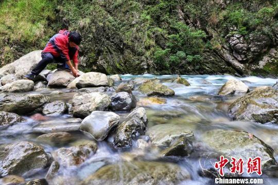 资料图。图为麻阳河国家级自然保护区。 瞿宏伦 摄