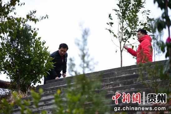 2月11日,贵州省黔东南苗族侗族自治州丹寨县排调镇的干部职工在参加义务植树活动。