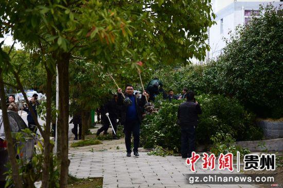 2月11日,在贵州省黔东南苗族侗族自治州丹寨县排调镇,参加义务植树活动的干部职工在搬运树苗。