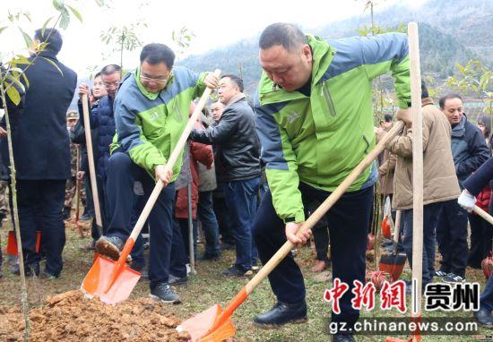 沿河土家族自治县县委副书记、县长何支刚参与植树。