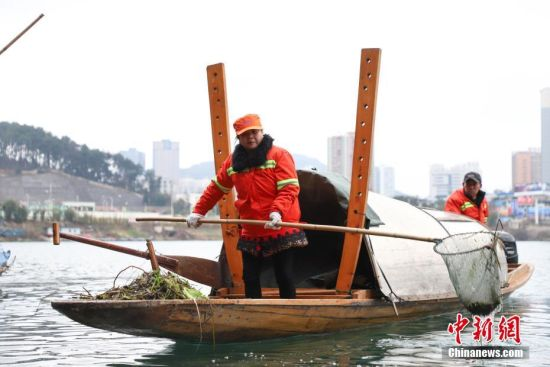 芦忠华和胡孟君夫妻是贵州省铜仁市碧江区环卫局的环卫工人,夫妻两人每天要和队友负责面积约350万平方米、长约12公里的锦江流域的垃圾打捞工作,从2006年始至今已坚守13年。2018年,芦忠华和胡孟君被评为贵州省道德模范。图为胡孟君在打捞河道中的杂草。瞿宏伦 摄