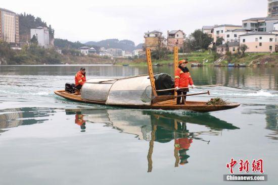 芦忠华和胡孟君夫妻是贵州省铜仁市碧江区环卫局的环卫工人,夫妻两人每天要和队友负责面积约350万平方米、长约12公里的锦江流域的垃圾打捞工作,从2006年始至今已坚守13年。2018年,芦忠华和胡孟君被评为贵州省道德模范。图为芦忠华(左)和胡孟君夫妻乘打捞船行驶在锦江河。瞿宏伦 摄