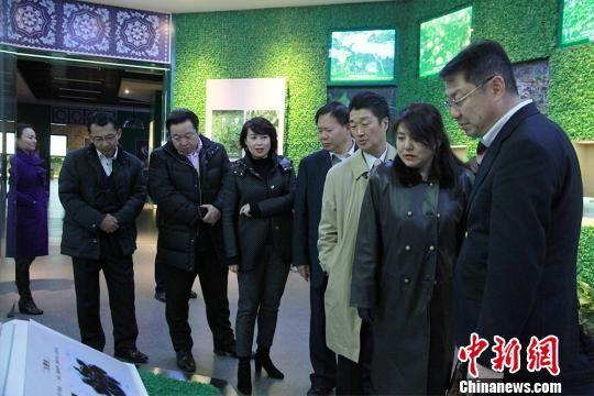 日方企业家代表团参观贵州苗药文化博览馆。 宁南 摄