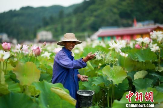 正在劳作的村民。 杨云 摄