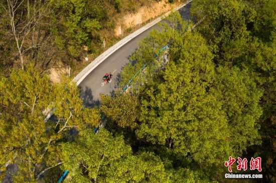 """3月10日,结束一天的巡山护林后,王永仁骑摩托回家。44岁的护林员王永仁是贵州省望谟县红水河国有林场纳上片区护林员,1995年,王永仁一家来到望谟纳上林场,用4年的时间义务为林场种植184.5亩杉树,并对周边的天然林地进行保护。24年来与树为伴,坚持植绿、爱绿、护绿,纳上林场12000亩林场在他与同伴的守护下,树木得到妥善保护,森林火灾等人为隐患大大减少。2018年7月,贵州省发改委、林业厅、环保厅和共青团贵州省委对全省在建设国家生态文明试验区、推进大生态战略行动中做出突出贡献的10名护林员进行表彰,王永仁被授予""""十大生态护林员""""荣誉称号。中新社记者 贺俊怡 摄"""