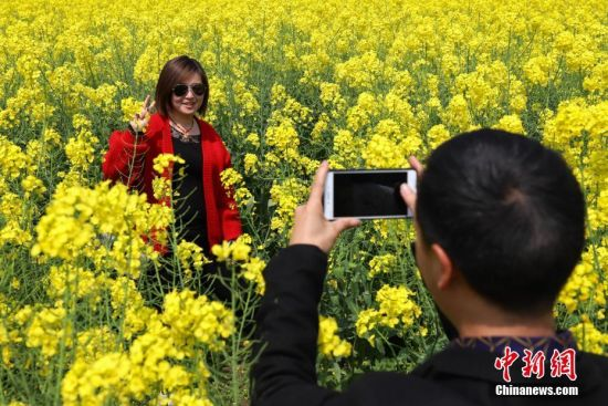 """3月19日,游客在""""龙字田""""油菜花丛内拍照。近日,贵州省安顺市龙宫漩塘景区的内油菜花竞相绽放,巨大的繁体""""龙""""字清晰可见,吸引市民和游客观光游玩。该""""龙""""字景观占地面积120亩,采用两种农作物套种,春季采用油菜花和蚕豆套种,秋季采用普通水稻和黑糯米水稻套种。中新社记者 瞿宏伦 摄"""