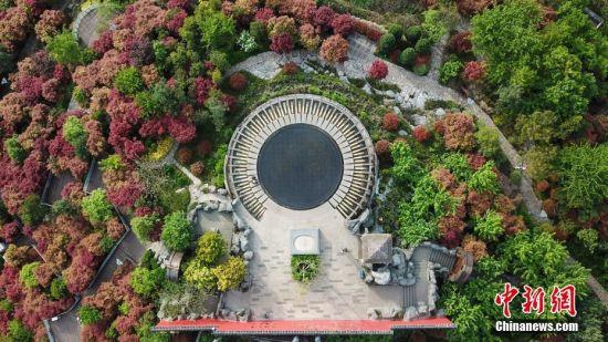"""4月11日,航拍""""天空之镜""""景点。当日,贵州贵阳市泉湖公园内的""""天空之镜""""景点吸引了不少游客前来拍照游玩。该景点位于公园山顶,是一个直径8米左右的圆形水池,宛如一面巨大的镜子,倒映出天空、白云、高楼等景色。中新社记者 瞿宏伦 摄"""