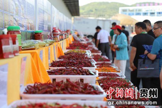 图为客商在新蒲新区选购辣椒。瞿宏伦摄