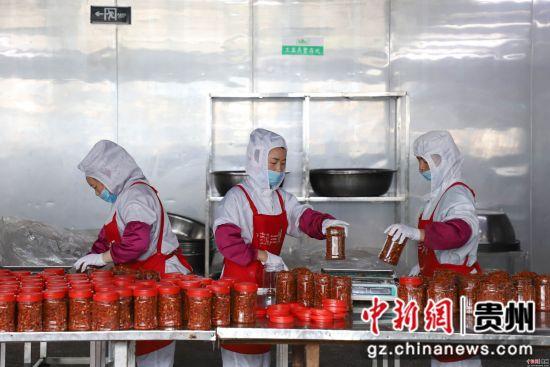 图为新蒲新区辣椒产业加工园辣椒企业在生产。瞿宏伦 摄