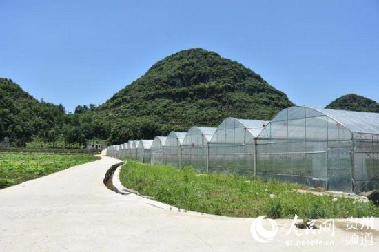 磊跨村在产业入驻之前就进行了较为完善的基础设施建设。丁雪 摄
