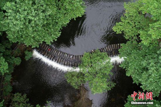 """7月2日,俯瞰贵阳市阿哈湖国家湿地公园,民众在小车河百步桥游玩。贵阳市自2015年启动""""千园之城""""建设,计划将公园面积从2014年的6.8万亩增加至33万亩,人均公园绿地面积由10.95平方米提升到13平方米,截至2019年4月,贵阳市已建成城市公园、森林公园、山体公园、湿地公园、社区公园""""五位一体""""公园1025个,""""300米见绿、500米见园""""的目标正逐步实现。城中公园成为民众夏日乘凉游景好去处。中新社记者 贺俊怡 摄"""