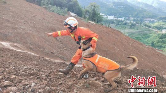 """图为尹礼辉与搜救犬""""小Q""""在贵州水城山体滑坡现场搜救。查仕瑶 摄"""