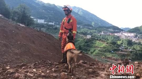 """图为尹礼辉与搜救犬""""小Q""""在贵州水城山体滑坡现场搜救。李杰 摄"""
