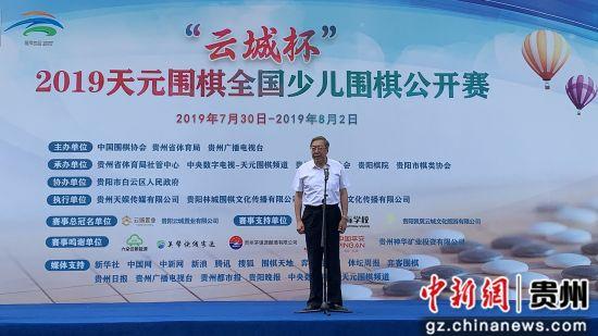 中国围棋协会主席林建超。