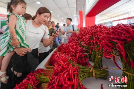 辣博会现场展出的辣椒吸引观众。中新社记者 贺俊怡 摄