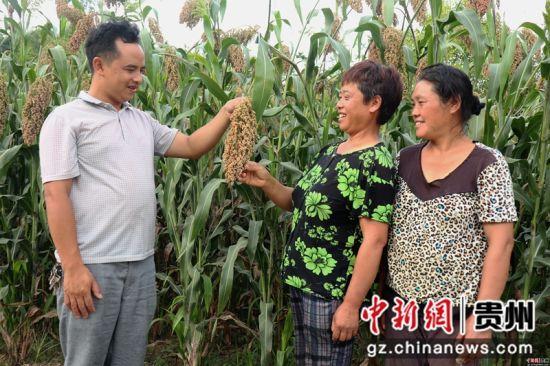 技术管理人员在向村民讲授高粱后期管护种植技术