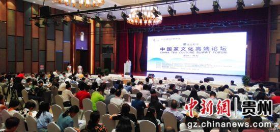 图为当地举行中国茶文化高端论坛活动。黄庆松 摄
